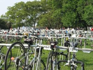 So many bikes!